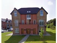 2 Bed Modern Apartment For Rent in Coleraine