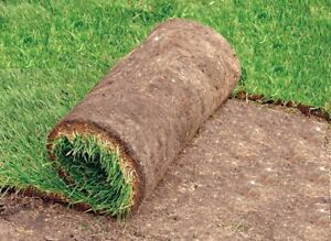 SOD INSTALLATION $1.00 sqft