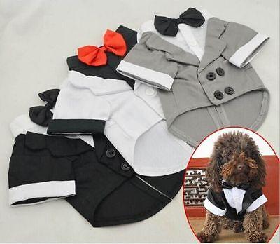idung Hochzeit Anzug Smoking Kostüm Kragen Hemd XS S M L XL (Hunde Smoking Kostüm)