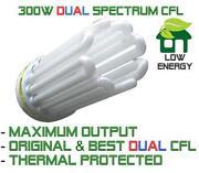 250W CFL