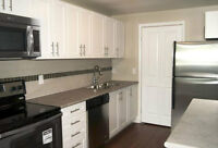 Looking for roommate for Sept 1 near Conestoga Doon