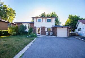 Beautiful Detached Home Location On Huge In High Desirable Area