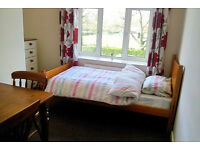 Single Room to let in clean and tidy flat in a center of Cosham