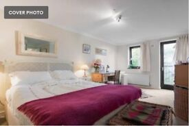 Light and spacious 2 bedroom 2 bathroom in the heart of Putney (Furnished)