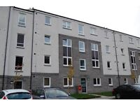 One room to let in beautiful two bedroom apartment