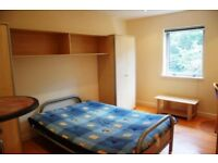 Student flat / studio / bedsit to rent - own kitchen + bathroom - STILL AVAILABLE; can move same day