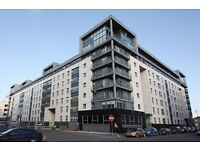 MODERN 2 BEDROOM APARTMENT WALLACE STREET £725 - AVAILABLE 31ST MAY 2017