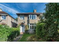 Lovely semidetached house to rent long term