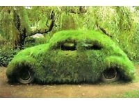 ** ~ CARS ~ CARS ~ CARS ~**