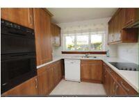 Modern dark oak kitchen units for sale