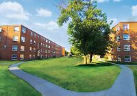 775 Concession: Apartment for rent in Hamilton Mountain - Pet...