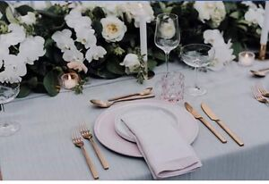 HIRE: pink flat dinning plates Landsdale Wanneroo Area Preview