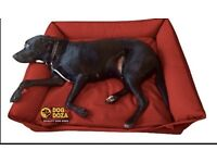 Dog doza sofa bed