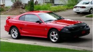 For Sale: 1995 Mustang GT - Immaculate