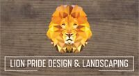 Sodding / Sod Installation / Landscaping / New Grass / Planting