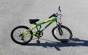 Nakamura Juvy Bike