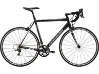 Cannondale CAAD 8 105 99% NEW 56inch