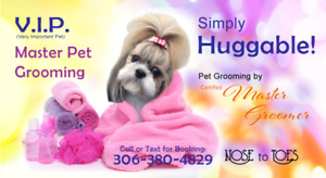 Nose to Toes Dog Grooming for that Huggable Feeling