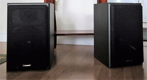 Large Stereo Bookshelf Speakers