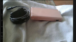 Nintendo DS rose