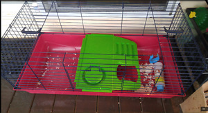 decent guinea pig bunny rabbit lop Chinchilla cage