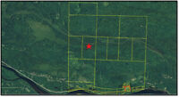Hunting Land for Sale close to Highway 17 near Blind River