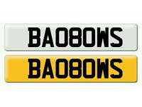 Personalised registration Private number plate
