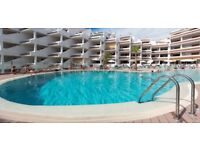 Paloma Beach Apartments - 1 & 2 Bedrooms Available