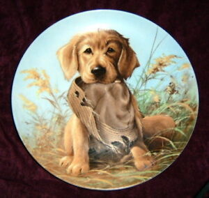 """Caught In The Act Golden Retriever"" Collector Plate"