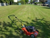 Lawn cutting services call now 6477125231