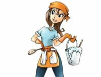 Experienced, Reliable Residential Cleaner/Organizer Available