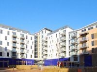 Two Bedroom apartment Canning Town station £380 per week, DSS welcome with sufficient funds