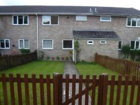 Double Room in Shared House near General Hospital