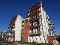 Lush apartment Manchester City centre for sale
