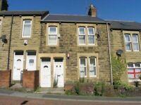 3 BED UPPER FLAT Hewitson Terrace, Gateshead, Tyne And Wear NE10 9HQ
