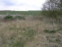 Land Wanted Within 20 miles of Exeter. 1/ 2 acres or less. Good money waiting. Anything considered.