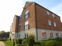 Smart, modern 2 bedroom apartment at Blease Close, Staverton Marina, Trowbridge