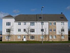 2 Bedroom ground floor flat in desirable area of hamilton