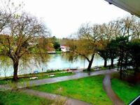 Kingston River view, double bedroom in perfect location