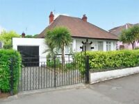 Newly decorated detached 3 bedroom bungalow to rent in Rhydypenau.