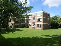 Beautiful and Refurbished Two Bedroom Flat for Let in Acocks Green