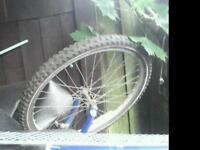 Boys mountain bike wheel