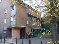 Lovely 4 bed maisonette only 3 mins from Stockwell tube, shops and facilities.
