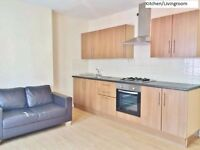 Stunning and Spacious 6 Double Bedroom Flat near Charing X Hospital Hammersmith