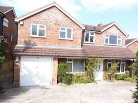 Stunning 5 bedroom house available £1995