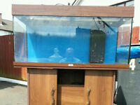 Sumped rio 180 marine tank/aquarium suitable for other fish as well