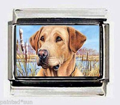 yellow Labrador lab dog BEST photo 9mm Italian Charms for link
