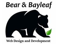 Website Design - Web Designer - eCommerce, Community B2C, B2B Fast Service, Great Support