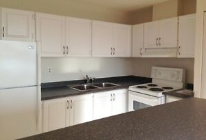 1 bedroom slated reno $1175 April 1st *utilities included*