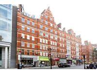 2 bedroom flat in Grays Inn Road, Clerkenwell
